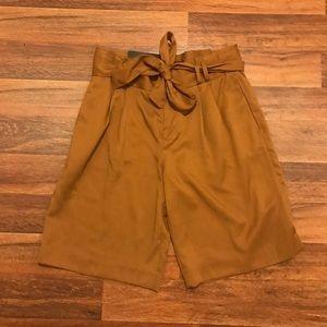 Banana Republic Avory 10.5 Tie Shorts Size 2